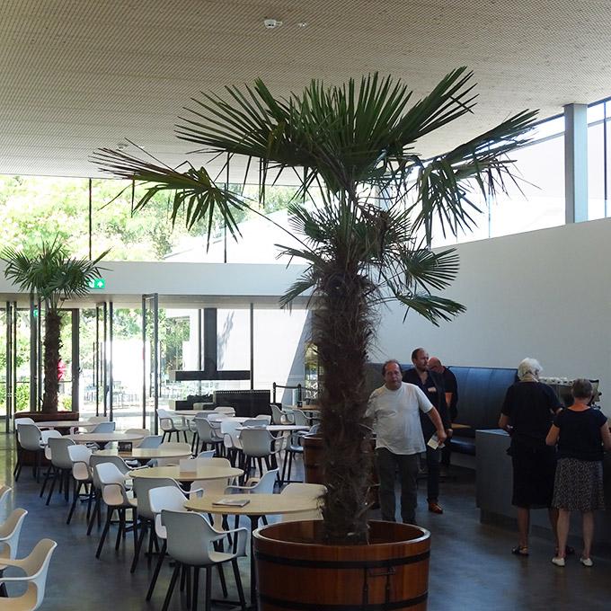 B&B-Tilburg restaurant De Pont Museum