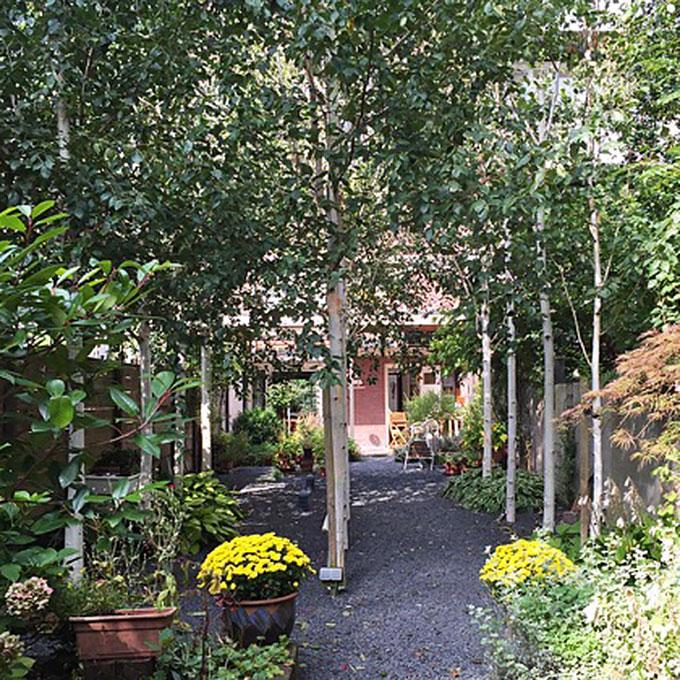 B&B-Tilburg Gust van Dijk, Uitzicht door de tuin naar het huis.