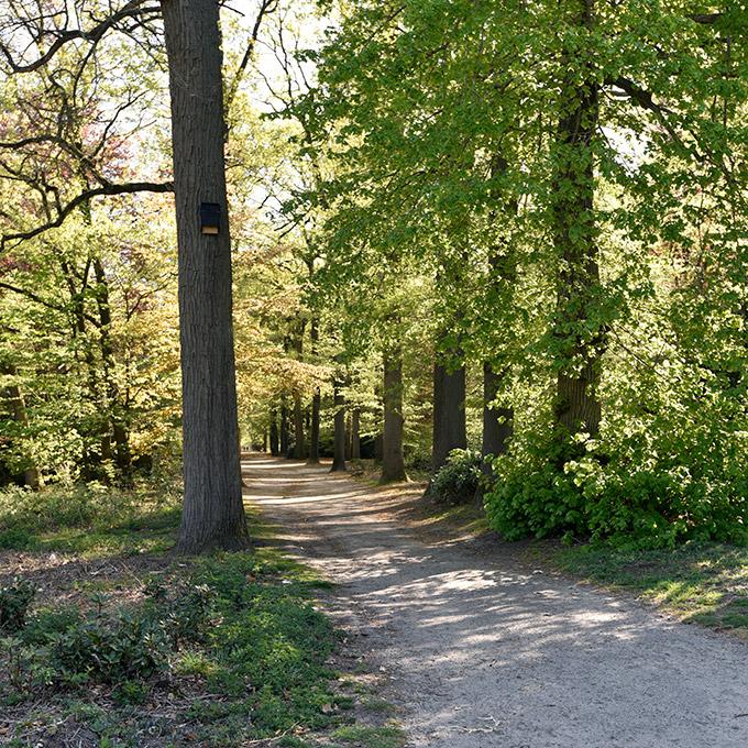 B&B-Tilburg, Forrest Oude Warande, University-campus