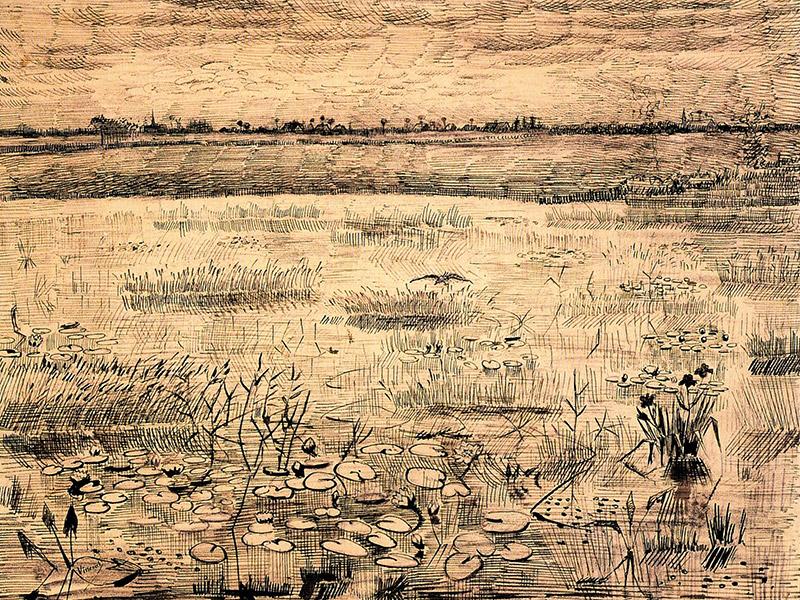 B&B-Tilburg, drawing Vincent Van Gogh Strijbeekse Heide